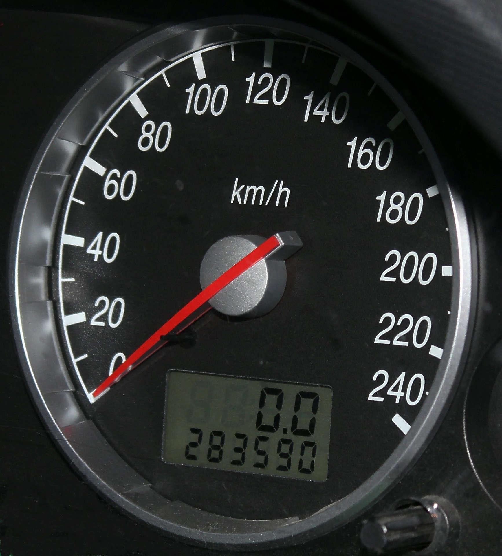 speedo-534761_1920